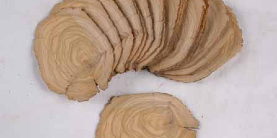 Placage d'olivier scier en bois de bout © E.DE SAINT EXUPERY